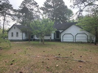 Hazlehurst Single Family Home For Sale: 795 Douglas Hwy