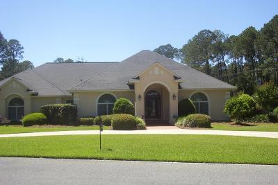 Douglas Single Family Home For Sale: 1224 Green Hollow Run