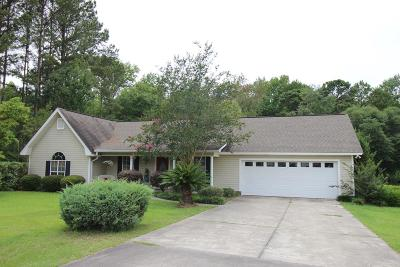 Douglas Single Family Home For Sale: 132 Plum Drive