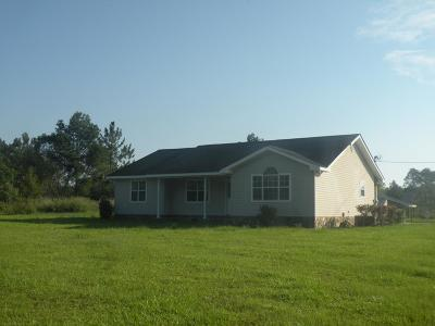 Douglas Single Family Home For Sale: 499 Minchew Rd