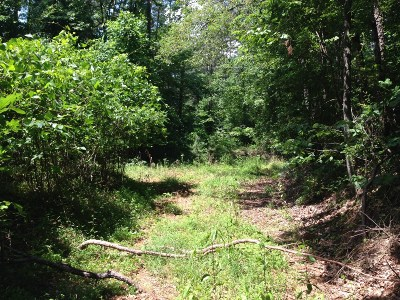 Dahlonega Residential Lots & Land For Sale: Kate Road