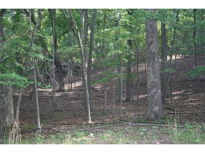 Bent Tree Residential Lots & Land For Sale: 1290 Oglethorpe Mountain Road