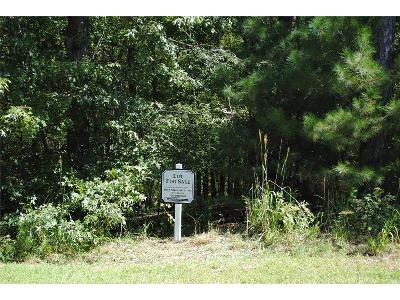 Buckhead Residential Lots & Land For Sale: 1381 Grayson Pointe Drive