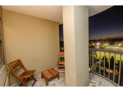 Sandy Springs Condo/Townhouse For Sale: 795 Hammond Drive #810