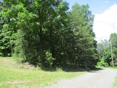 Residential Lots & Land For Sale: 965 Raccoon Ridge