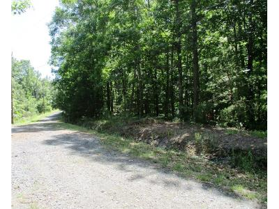 Residential Lots & Land For Sale: 1207 Jewel Court SW