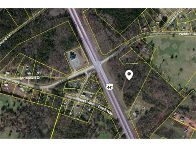 Commercial For Sale: Webbs Creek Road