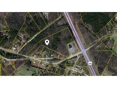 Commercial For Sale: 00 Historic Homer Highway