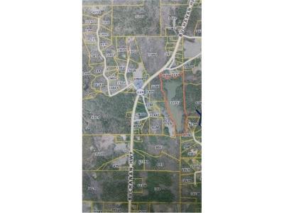Carroll County, Coweta County, Douglas County, Haralson County, Heard County, Paulding County Residential Lots & Land For Sale: Buchanan Highway