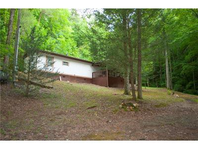Ellijay Single Family Home For Sale: 669 Old Parker Terrace