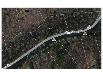 Residential Lots & Land For Sale: Lot 67 Ginger Drive