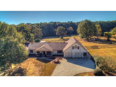 Walton County Single Family Home For Sale: 231 Roscoe Davis Road