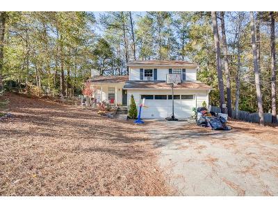 Snellville Single Family Home For Sale: 2041 Walden Park Place
