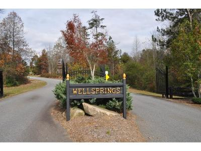 Residential Lots & Land For Sale: 4987 Fountain Springs Drive