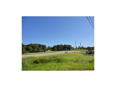 Residential Lots & Land For Sale: 2821 Jay Mountain Road