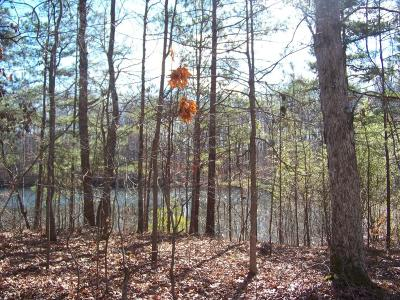 Douglas County Residential Lots & Land For Sale: Laura Lane