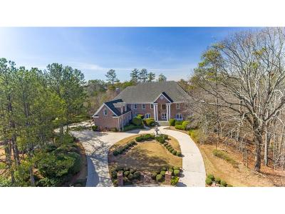 Johns Creek Single Family Home For Sale: 10970 Old Stone Court