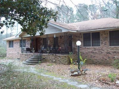 Powder Springs Single Family Home For Sale: 3920 Hiram Lithia Springs Road