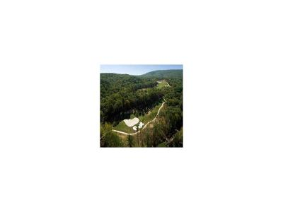 Residential Lots & Land For Sale: 166 Wolverine Drive