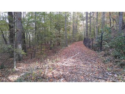 Alpharetta, Cumming, Johns Creek, Milton, Roswell Residential Lots & Land For Sale: Juniper Street