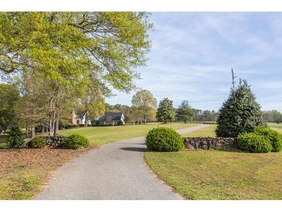 Coweta County Single Family Home For Sale: 5067 Smokey Road