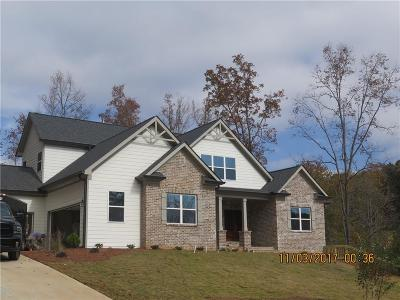 Dawsonville Single Family Home For Sale: 67 Appling Drive