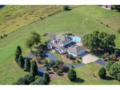 Single Family Home For Sale: 4080 Ellison Farm Road