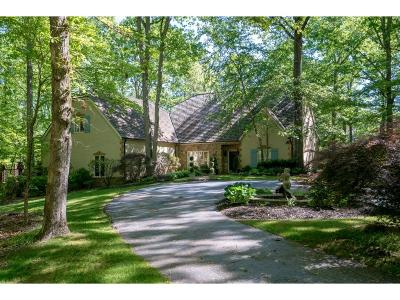 Woodstock Single Family Home For Sale: 4065 Earney Road