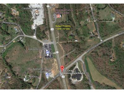 Commercial For Sale: 00 Highway 129 S
