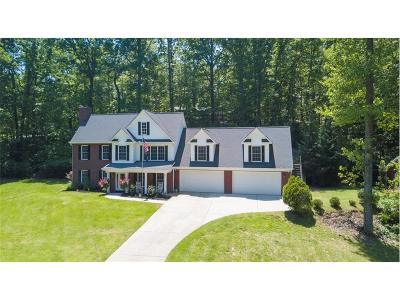 Dawsonville Single Family Home For Sale: 11 Mountain Lake Road