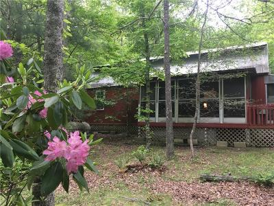 Ellijay Single Family Home For Sale: 155 Mountain Spirit Way