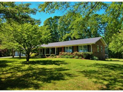 Lumpkin County Single Family Home For Sale: 596 Grindle Brothers Road