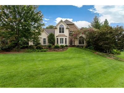Kennesaw Single Family Home For Sale: 1156 Valor Ridge Way NW
