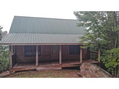 Rabun County Single Family Home For Sale: 312 Tallulah View