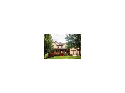 Dawsonville Single Family Home For Sale: 701 Amicalola Drive