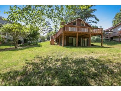 Dawsonville Single Family Home For Sale: 99 Overlook Court