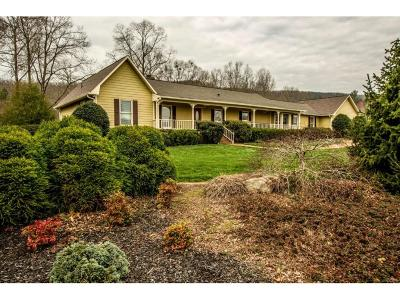 Floyd County, Polk County Single Family Home For Sale: 2877 Floyd Springs Road