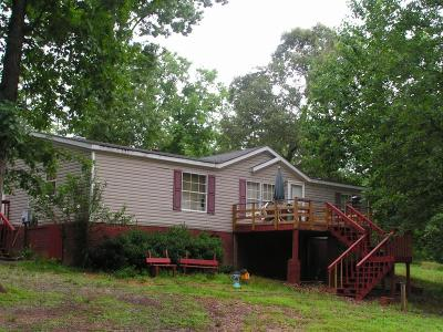 Dawsonville Single Family Home For Sale: 330 Ridge Road