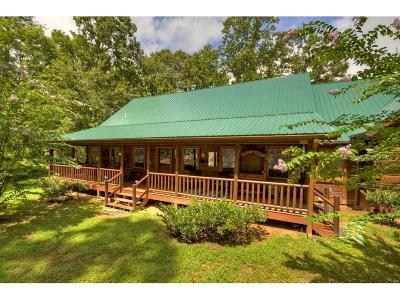 Ellijay Single Family Home For Sale: 4852 Chatsworth Highway