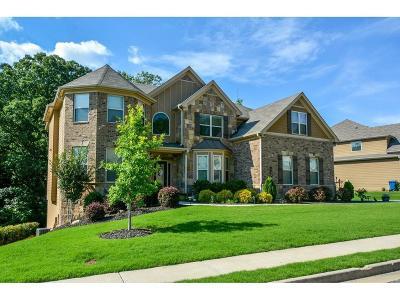 Lawrenceville Single Family Home For Sale: 1390 Azalea Brook Drive
