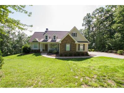 Dawsonville Single Family Home For Sale: 746 Amicalola Woods Road