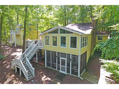 Forsyth County, Gwinnett County Single Family Home For Sale: 9110 Four Mile Creek Road
