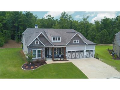 Dawsonville Single Family Home For Sale: 98 Highpointe Drive