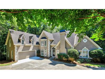 Sandy Springs Single Family Home For Sale: 875 S Powers Court