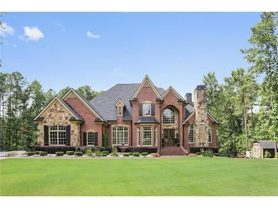 Acworth Single Family Home For Sale: 1655 County Line Road NW