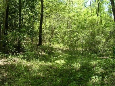 Haralson County Residential Lots & Land For Sale: W Mill Street