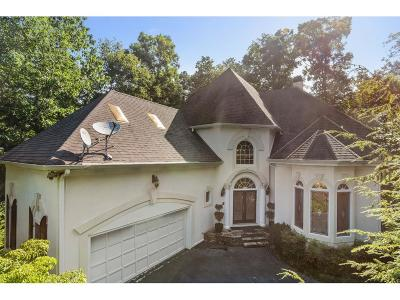 Johns Creek Single Family Home For Sale: 130 Stoney Ridge Drive