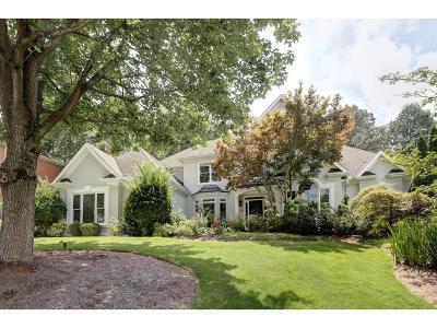 Alpharetta Single Family Home For Sale: 4135 Falls Ridge Drive
