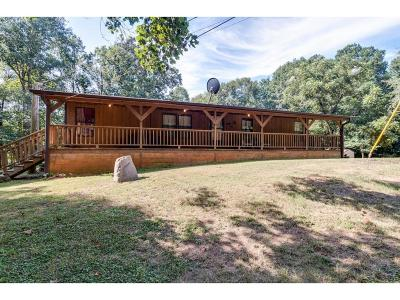 Single Family Home For Sale: 2068 Lipscomb Lake Road