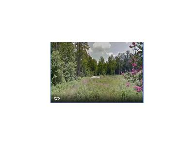 Roswell  Residential Lots & Land For Sale: 10745 Shallowford Road